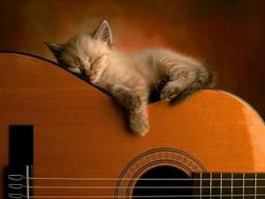 Обучение игре на гитаре для новичков и более опытных музыкантов