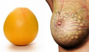 Грейпфрут и грудь