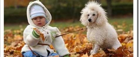 Самые лучшие домашние животные для детей