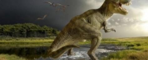 В Нигере найден предок динозавров