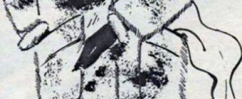 Женское полупальто разм. 48-50